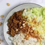 Vegetarische rendang met kokosrijst en Chinese kool