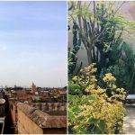 Citytrip Marrakesh: dagboek en tips